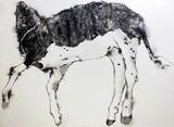 the calf2